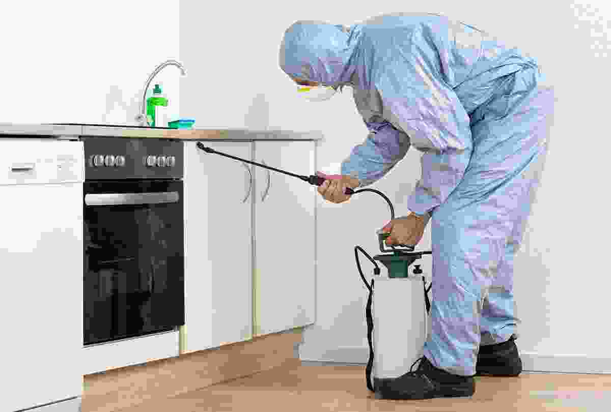 Spraying the House Care Chemical